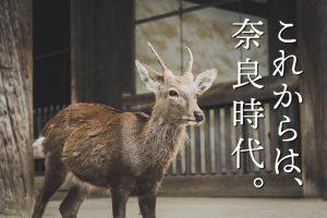 これからは奈良時代。